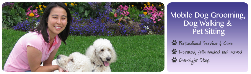 San Diego Dog Walker and Pet Sitter